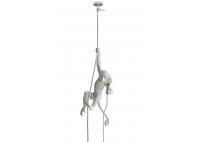 Monkey Lamp - hanging