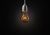 Original Decorative Light Bulb
