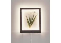 FRAME Wall Lamp 41x33
